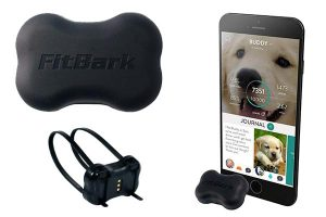 FitBark 2 dog trackers
