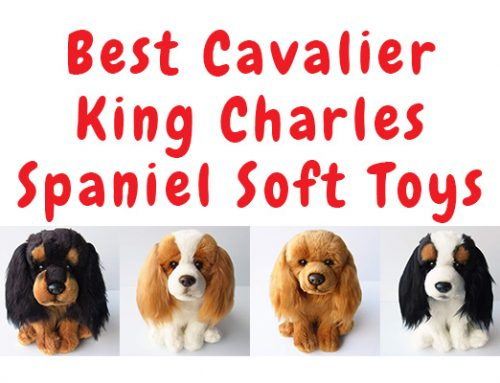 Best Cavalier King Charles Soft Toys