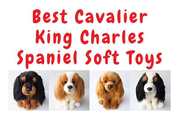 Cavalier King Charles Soft Toys